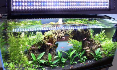 led-lighting-aquarium-lamp-for-plants