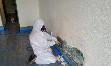 asbestos removal price