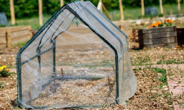buy grow tent